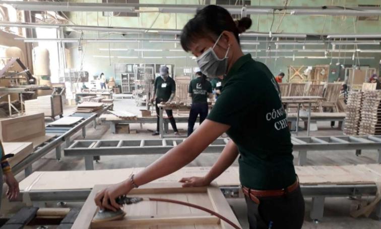 Lam Viet JSC on ILO Article -